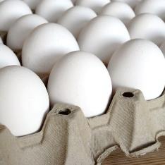 В магазинах яйца не продаются или продаются «из-под полы»