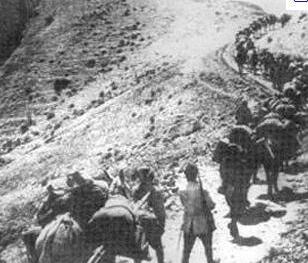 Արևմտյան Հայաստանի Ազգային Խորհրդի կողմից կատարված Չեզոքության որոշման վերաբերյալ