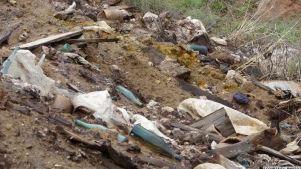 Կորոշվեն Նուբարաշենի թունաքիմիկատների գերեզմանոցի ռիսկերը