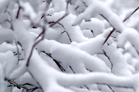 Հունվարի 28-ին, 29-ին, 30-ին, 31-ին սպասվում է ձյուն