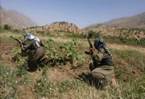Курдские повстанцы похитили одного из лидеров правящей партии Турции
