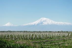 ՀՀ գյուղատնտեսության նախարարությունը զգուշացնում է