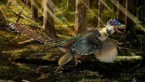 Չինաստանում թևավոր դինոզավրի կմախք են գտել (լուսանկարներ)