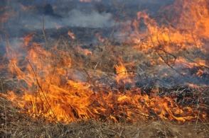 «Փարոս»-ի անտառում հրդեհվել է 800 քմ խոտածածկ տարածք