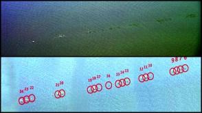 Ջրի մակերեսին քար նետելու աշխարհի ռեկորդ է սահմանվել
