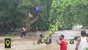 Նիգերիայում մարդիկ ջրհեղեղից փրկվելու համար ծառերի վրա են բարձրացել