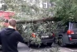 Կրկին փոթորիկ Մոսկվայում․ 15 մարդ տուժել է