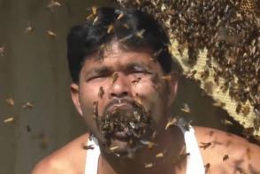 Հնդիկը կենդանի մեղուներ է լցրել բերանը