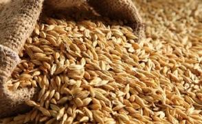 Բաքուն թույլ չի տալիս Թբիլիսիին. ի՞նչն է խոչընդոտում Ղազախստանից Հայաստան ցորենի առաքմանը