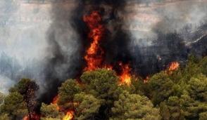 Նորաբաց գյուղում մոտ 3 հա խոտածածկույթ է այրվել