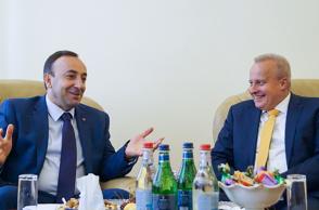 ՍԴ նախագահ Հրայր Թովմասյանն ընդունել է ՌԴ դեսպանին