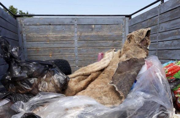 Розданное сельчанам мясо зараженного сибирской язвой животного собрали и сожгли (фото)