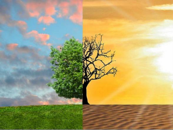 Для борьбы с глобальным потеплением понадобится почти $2 трлн – эксперты