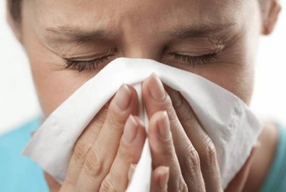 Հայաստանում գրիպի սեզոնին սպասվում են H1N1, H3N2 ենթատեսակներն ու B տեսակը