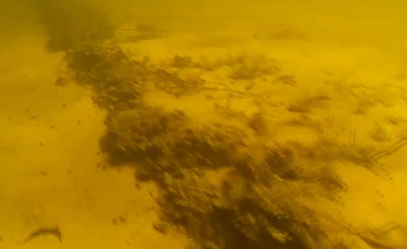 На дне Волги нашли затонувшую около 600 лет назад ладью