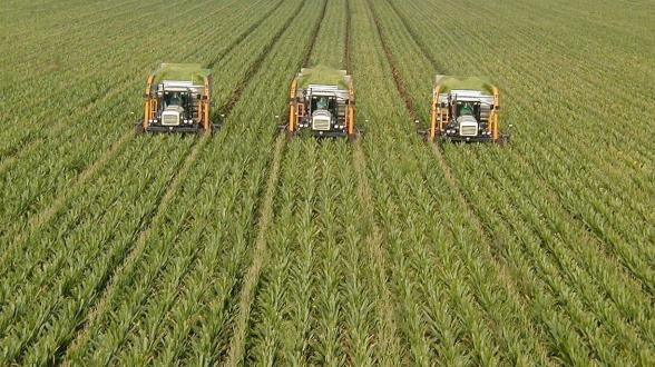 В сельском хозяйстве продолжается спад: крестьянам не были предоставлены горючее, семена, консультации – «Жоховурд»
