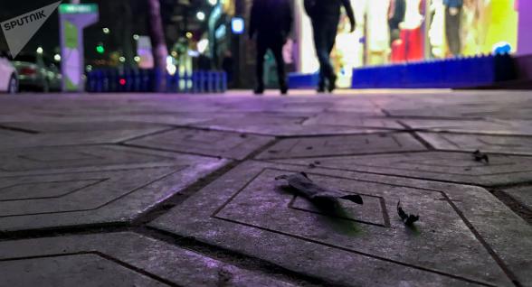 Երևանում մոխրի «անձրև» է տեղացել (տեսանյութ)