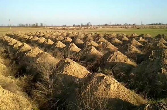 Դնեպրում իշխանությունները մեկուսացման հորդորներն անտեսող քաղաքացիներին վախեցնելու համար ավելի քան 600 գերեզմանափոս են փորել (տեսանյութ)