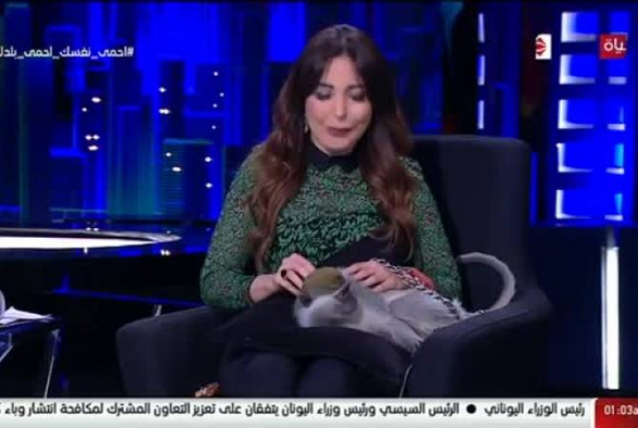 Հեռուստատեսային տաղավարում կապիկը հարձակվել է եգիպտացի հաղորդավարի վրա (տեսանյութ)