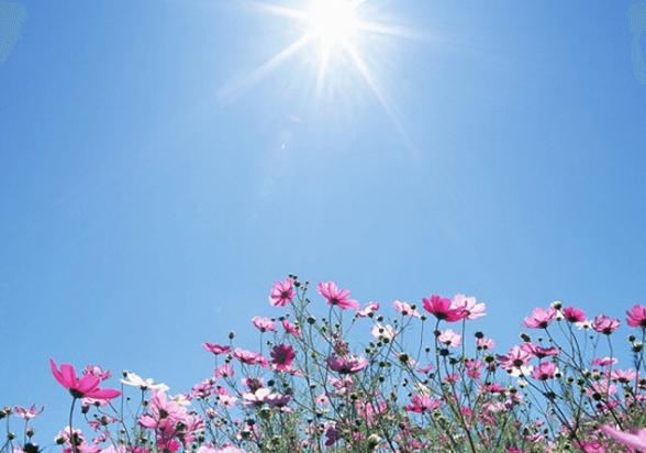 Օդի ջերմաստիճանը մայիսի 28-29-ի ցերեկն աստիճանաբար կբարձրանա 2-3 աստիճանով
