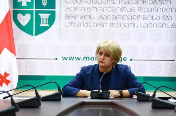Սեզոնային աշխատանքի մեկնող Վրաստանի քաղաքացիները կառավարության կողմից 300 լարի օգնություն կստանան