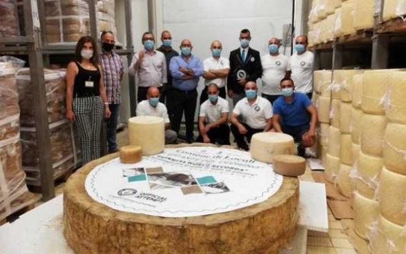 600 կգ քաշ, 60 սմ բարձրություն. Իտալիայում պանրագործներն աշխարհի ամենամեծ պանիրն են պատրաստել