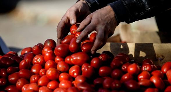 Россия предупредила Азербайджан о возможном ограничении импорта фруктов и овощей
