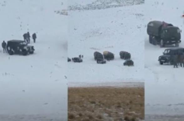 Азербайджанские воинские подразделения скапливаются в горах близ Джермука, будут строить воинскую часть – «Пастинфо» (видео)