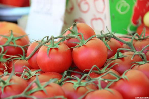 Казахстан пригрозил РФ ответными мерами из-за ограничения ввоза томатов