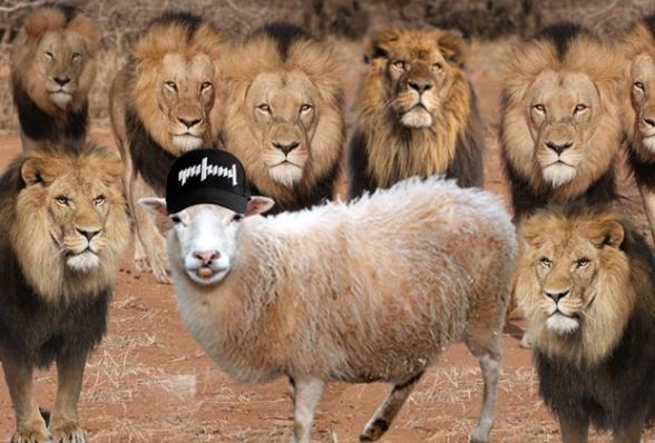 Մոռանա՛լ ոչխարին