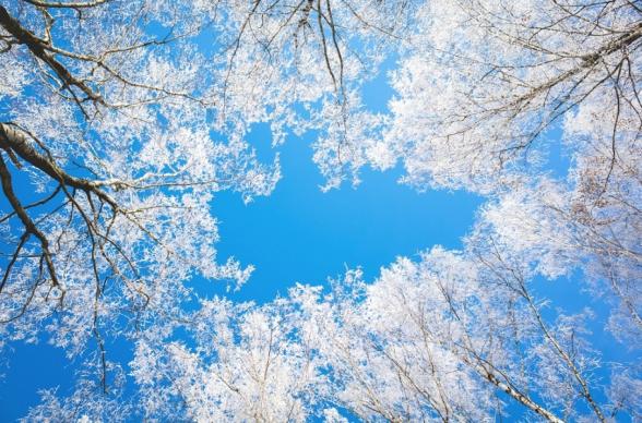 Օդի ջերմաստիճանն ապրիլի 15-18-ը պայմանավորված հարավից տաք օդային հոսանքների ներթափանցմամբ՝ կբարձրանա 8-10 աստիճանով