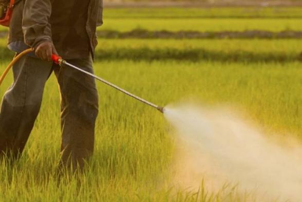 ՀՀ-ում արձանագրվում են թունաքիմիկատներով թունավորումների դեպքեր. ԱՆ-ն հորդորում է պահպանել որոշ կանոններ