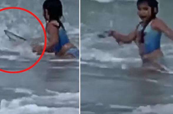 ԱՄՆ-ում մայրը պատահաբար տեսագրել է՝ ինչպես է 6-ամյա դուստրը փախչում շնաձկան հարձակումից