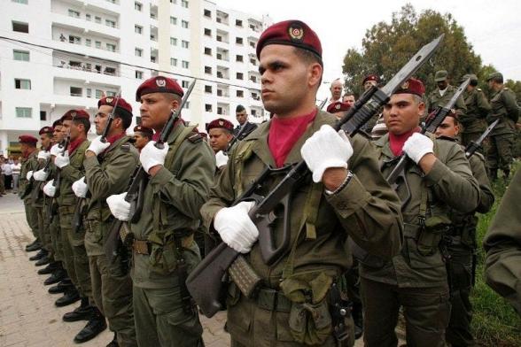 Армия Туниса блокировала здание правительства