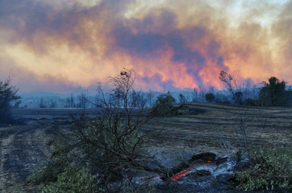 Թուրքիայում անտառային հրդեհների համար մեղադրում են ՔԱԿ-ի զինյալներին (լուսանկար)