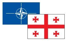 Դավիթ Սմիթ. «Մոսկվային չի վերաբերում Վրաստանի NATO մտնելու հարցը»