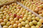 100 грамм абрикосов – 682 драма