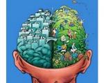 Ուղեղի մահացած բջիջները, որպես կանոն, չեն վերականգնվում