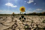 Կառավարությունն Արարատյան, Հրազդանի և Ախուրյանի ավազանային կառավարման տարածքներում սակավաջրություն է հայտարարել