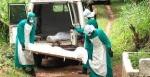 Էբոլայով վարակվածների թիվը 1 ամսից կարող է հասնել 550 հազարի