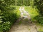«Ճանապարհն ամբողջ գյուղին էր պետք, չէ՞»