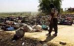 Գյուրջիս Քոչոյան. «Եզդիների ցեղասպանության հիմնական մեղավորը Թուրքիան է»