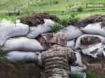 Азербайджанские ВС предприняли очередную диверсию: погибли 3 армянских солдат