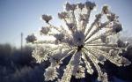 Վարդենիս քաղաքում տեղում է ձյուն