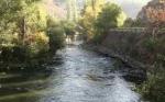 Խեղդվել է Հրազդան գետում