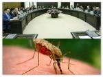 На борьбу с комарами правительство РА выделило 15 млн драмов
