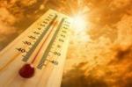 Օդի առավելագույն ջերմաստիճանը 38.80C է լինելու
