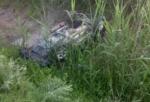 Տավուշի մարզում ավտոմեքենա է գլորվել ձորը