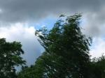 Օգոստոսի 7-8-ի երեկոյան ժամերին սպասվում է ամպրոպ