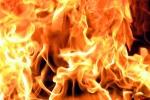 Թիվ 143 հիմնական դպրոցի մոտակայքում այրվել է 100 քմ բուսածածկույթ